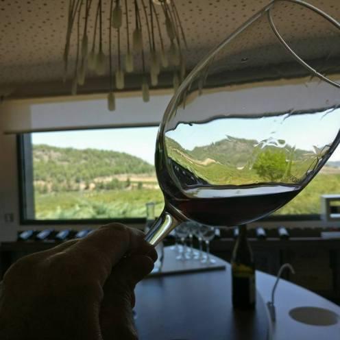Wineandtwits MG Wines Bodegas Lavia -Sonja K Little-